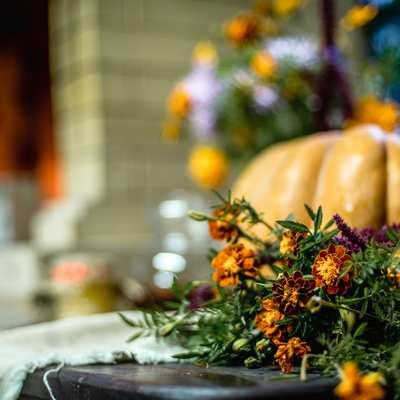 крымские овощи и цветы